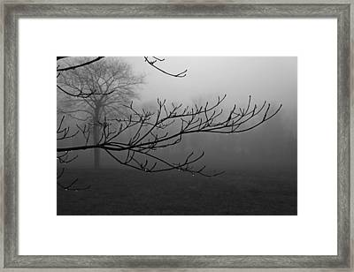 And Not A Word Was Spoken Framed Print