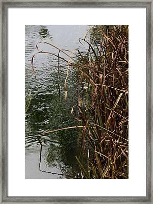 And The River Flows Framed Print by Odd Jeppesen