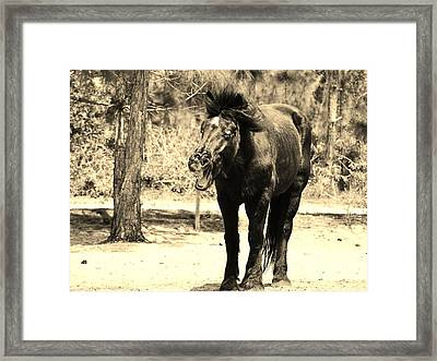and then the Bartender said... Framed Print