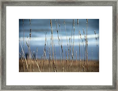 And Then The Sea Framed Print by Jez C Self