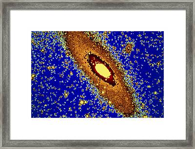 Andromeda Galaxy With Two Companion Galaxies Framed Print by John Sanford