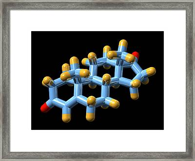 Androstenedione Hormone, Molecular Model Framed Print by Dr Mark J. Winter