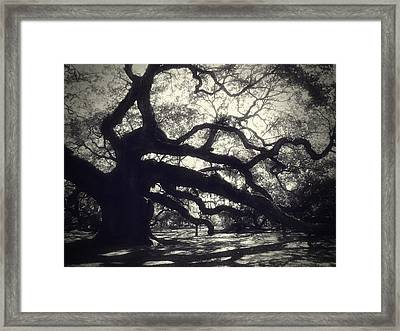 Angel Framed Print by Amy Tyler