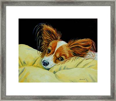 Angel Face - Papillon Framed Print by Lyn Cook