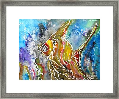 Angel Fish Framed Print by M C Sturman