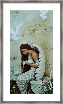 Angel Framed Print by Steven Wood