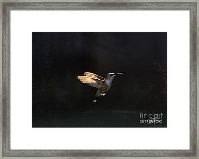Angel Wings At Sunset Framed Print by Cris Hayes