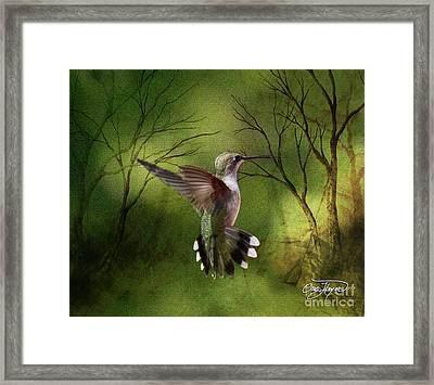 Angel Wings Framed Print by Cris Hayes