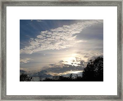 Angel's Wing Framed Print