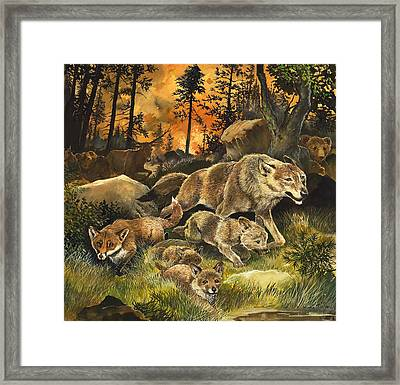 Animals United In Terror As They Flee From A Forest Fire Framed Print