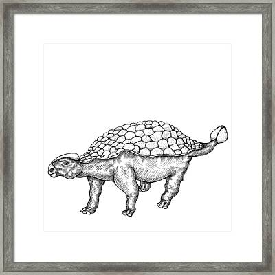 Ankylosaurus - Dinosaur Framed Print by Karl Addison