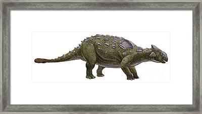 Ankylosaurus Magniventris Framed Print