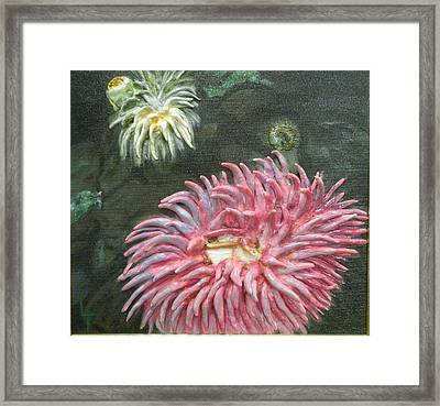 Anninamies Of The Sea Framed Print by Lorrie T Dunks