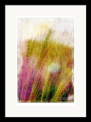 Judi Bagewll Framed Prints