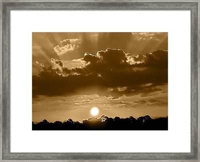 Another Florida Morning Framed Print