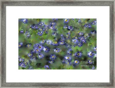 Another Something For You Framed Print by Leo Symon