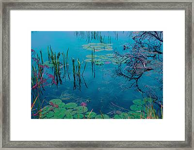 Another World Vii Framed Print by Joanne Smoley