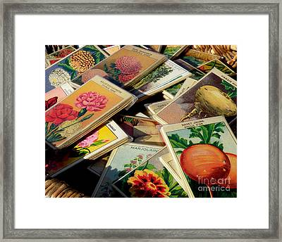 Antique French Seed Packs Framed Print by Lainie Wrightson