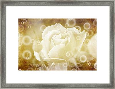 Antiqued Rose And Bubbles Framed Print by Janice Adomeit
