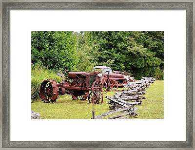 Antiques Display Framed Print
