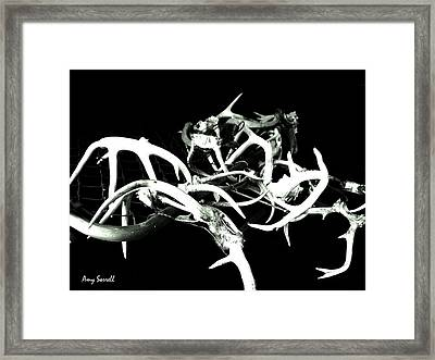 Framed Print featuring the photograph Antler Chain by Amy Sorrell