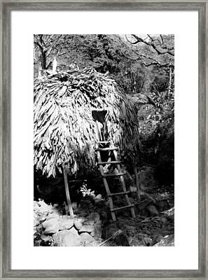 Anyone Home Framed Print by Elizabeth  Doran