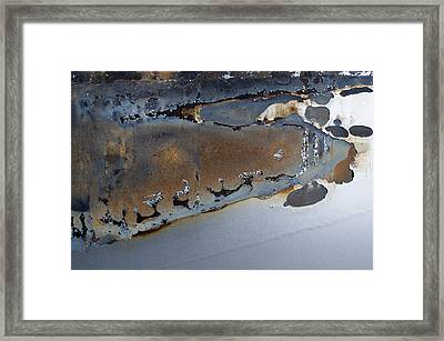 Ap12 Framed Print by Fran Riley