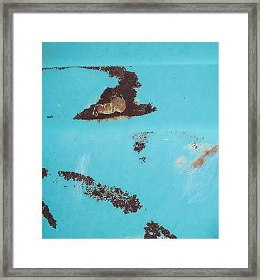 Ap13 Framed Print by Fran Riley