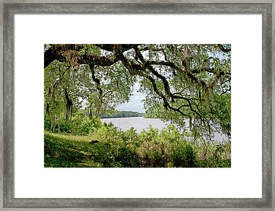 Apalachicola River Framed Print