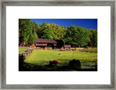 Appalachian Barn Yard Framed Print by Paul W Faust -  Impressions of Light