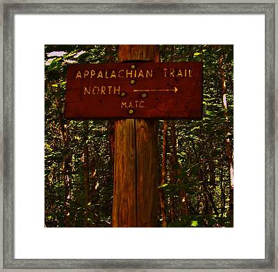 Appalachian Trail Framed Print by Sarah Buechler