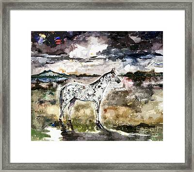 Appaloosa Spirit Horse Painting Framed Print by Ginette Callaway