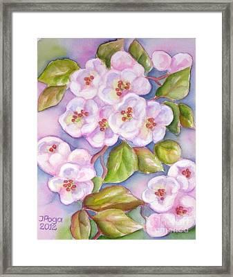 Apple Blossoms 2 Framed Print