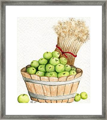 Apple Crate Framed Print by Paula Greenlee