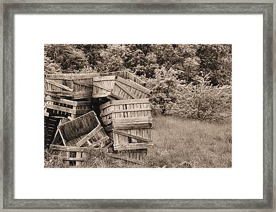 Apple Crates Sepia Framed Print by JC Findley