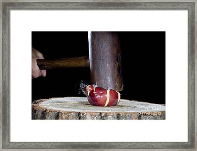 Apple Smashed With Mallet Framed Print by Ted Kinsman