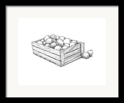 Apple Crates Drawings Framed Prints