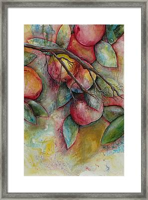 Apples On A Tree Framed Print