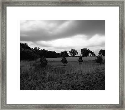 Approaching Storm Over Tree Farm Framed Print by Jan W Faul