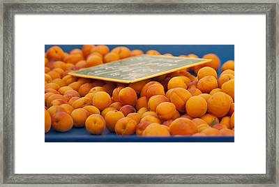 Apricots Framed Print by Georgia Fowler