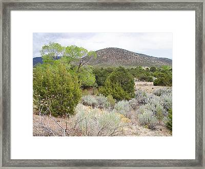 April New Mexico Desert Framed Print