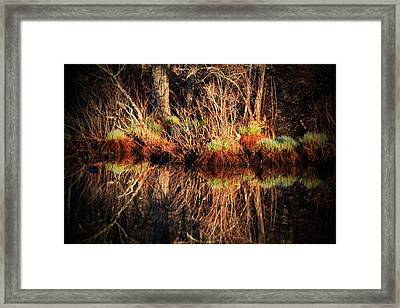 April's Pond Framed Print by Karol Livote