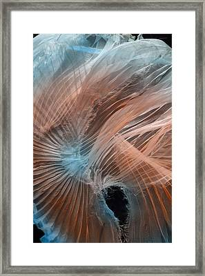 Framed Print featuring the photograph Aqua Amber Texture by Gillian Charters - Barnes