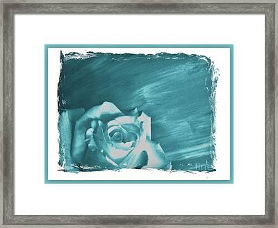 Aqua Beauty Rose Framed Print