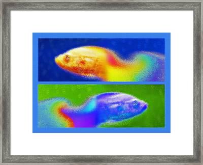 Aquarium Art Diptych 2 Framed Print by Steve Ohlsen
