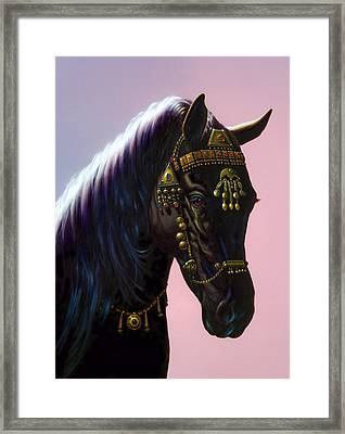 Arab Horse Framed Print by MGL Studio - Chris Hiett