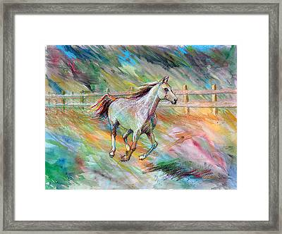 Framed Print featuring the painting Arabian Dream Horse by Nancy Tilles