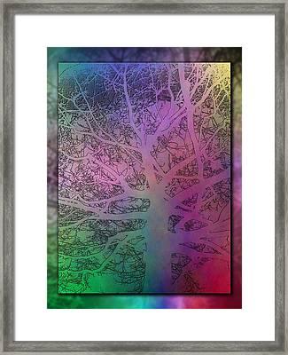 Arboreal Mist 3 Framed Print