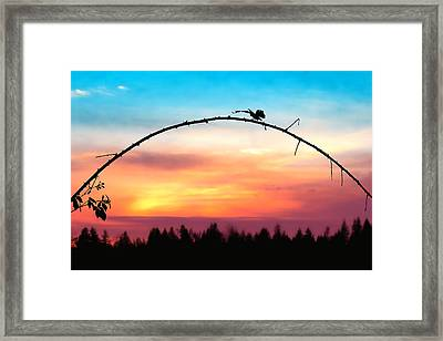 Arch Silhouette Framing Sunset Framed Print