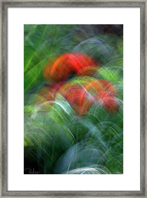 Arches Of Flowers Framed Print